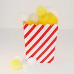 Pom Pom Popcorn and Container